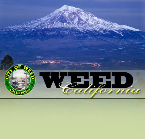 Weed Chamber Of Commerce